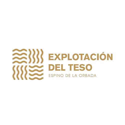 Digitaliza Tu Negocio   digitalizatunegocio.net   Logo Explotación del Teso.
